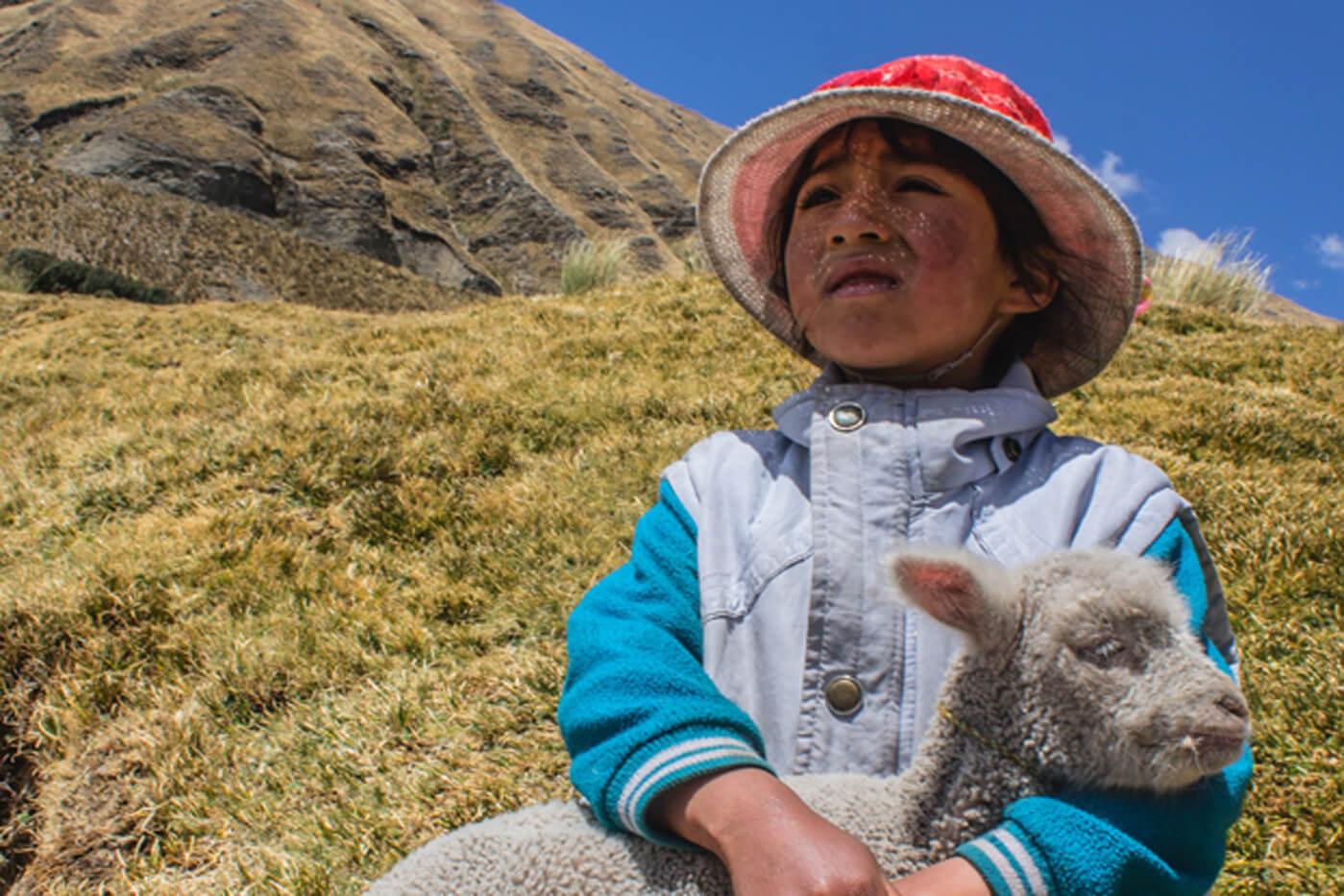 Peru Kind sitzt mit Lamm in der Landschaft